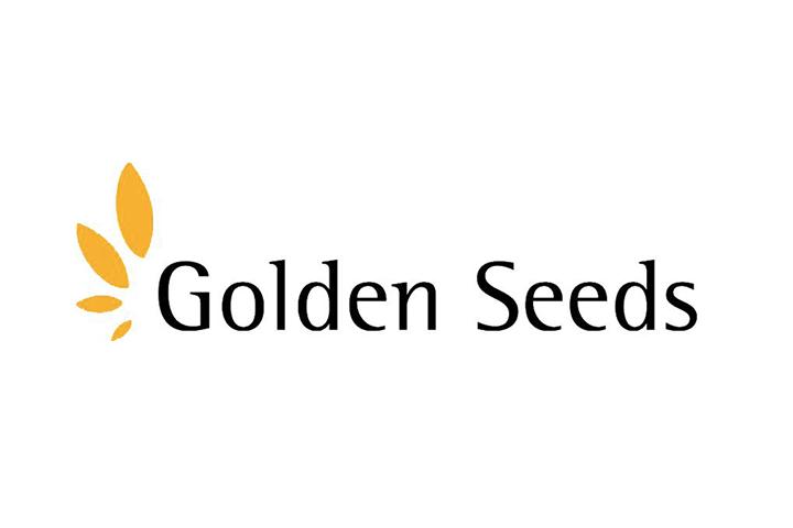 GoldenSeedsLogoCaseStudy